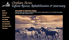 Equine Orphan Acres website design, web site design, web designer